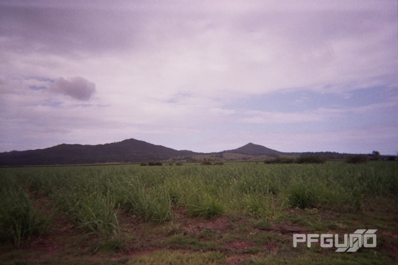 The Mountain And The Sugarcane [SHOT 1]