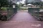 Path Through The Little Bridge