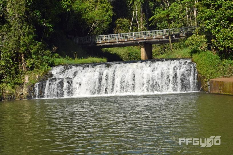 Bridge Above Malanda Falls