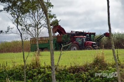 Harvester And Bin Tractor