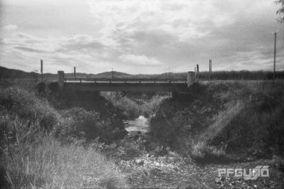 Bridge And The Steam